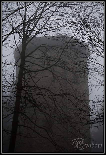 Mlha 4