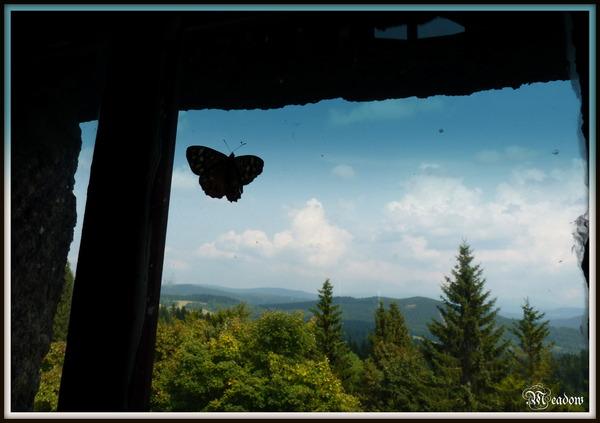 oknem-rozhledny