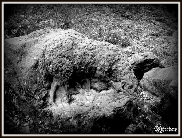 braunuv-betlem-ovce