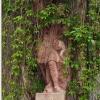 lisno-zarostla-socha