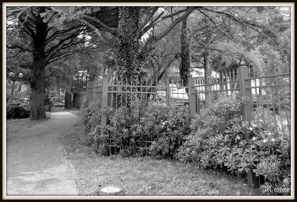 portoroz-zahrada