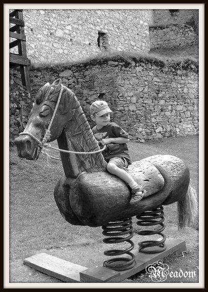 rabi-na-koni