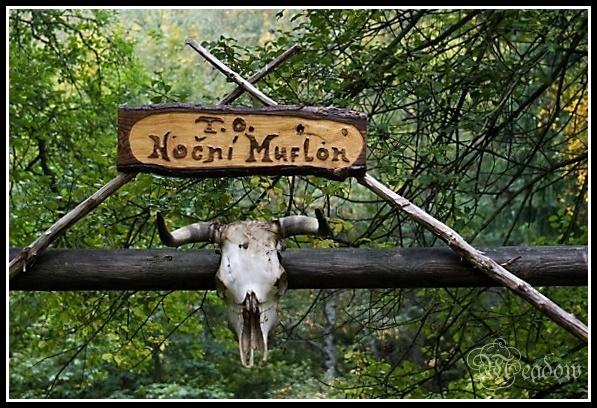 T.O. Nocni Muflon