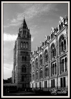 london-national-history-museum-1