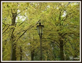 hradek-u-nechanic-lampa-zluta