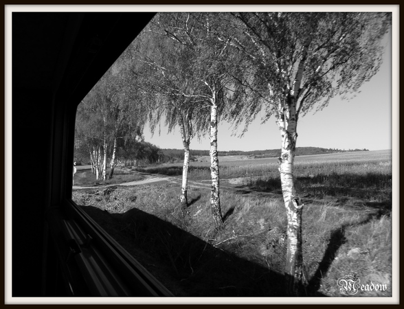 kralova-stolice-z-vlaku